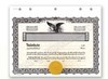 Goes MX Stock Certificates
