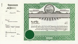 Stock Certificate 199 Custom Printed